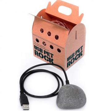 USB PetRock